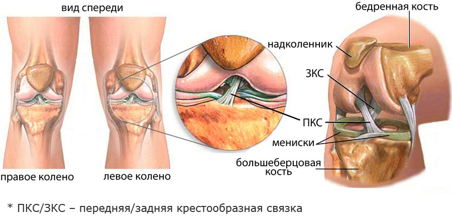 vătămare popliteală dureri articulare după tratamentul de antrenament