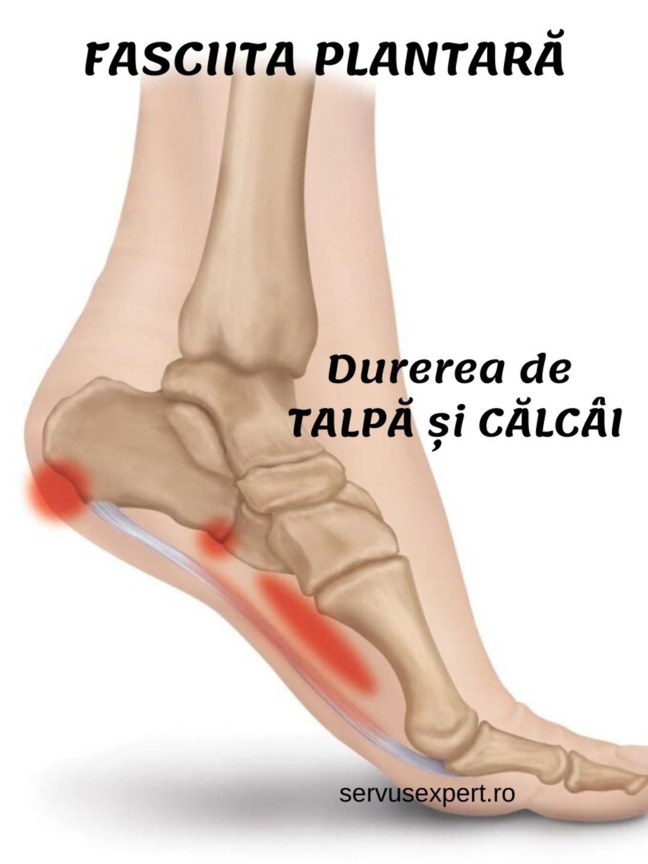 când articulația doare peste călcâie magneziu b6 pentru durerile articulare