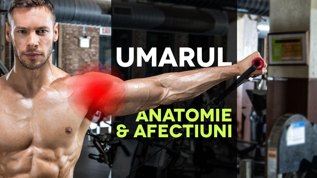 sală de gimnastică pentru artroza articulației umărului
