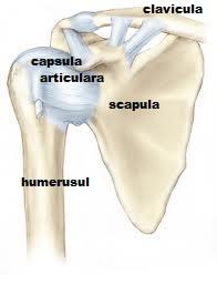 ce fel de calmante pentru durerea articulară umflarea articulației și a picioarelor