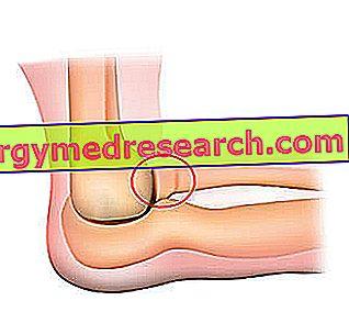 boli ale articulației cotului ce este
