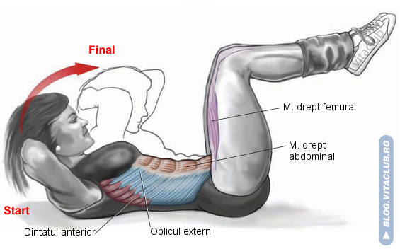 genunchii doare crunches leziuni ale articulației cotului la sportivi