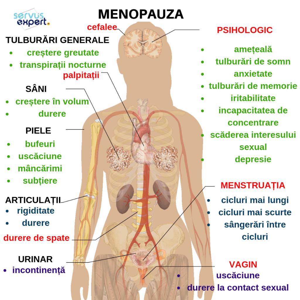 articulațiile doare menopauză