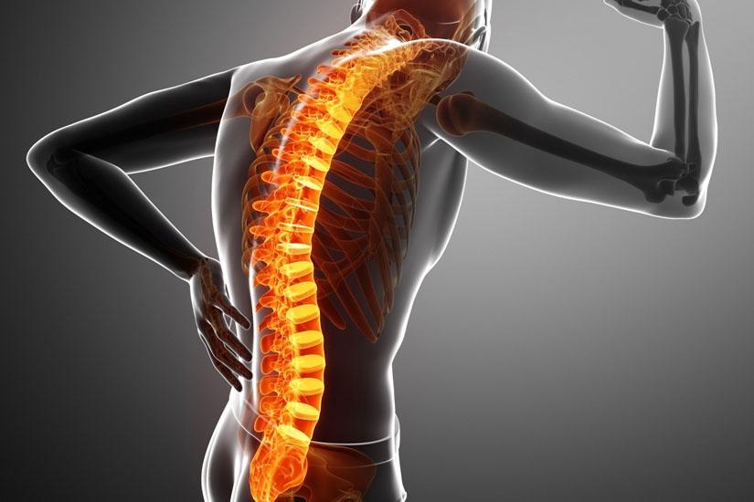 de la durerile articulare și inferioare ale spatelui exerciții în tratamentul artrozei deformante a genunchiului