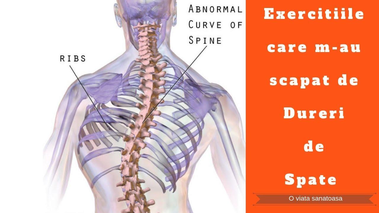 durere atunci când vă deplasați în articulațiile umărului artroza articulației gleznei stângi, tratament grad I