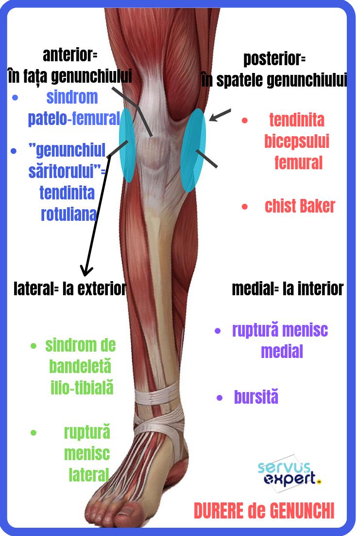 care sunt injecțiile pentru durerea articulației genunchiului cum se tratează artroza piciorului