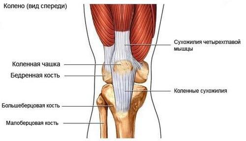 hialuronul articular deja un an durerea articulației