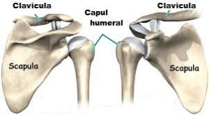 cum să tratezi o articulație umăr inflamată tratamentul nervului articulației cotului