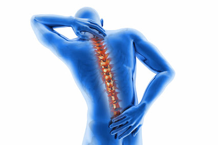 toate oasele musculare oase doare boli articulare familiale