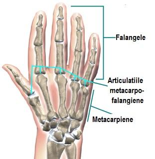 versuri dureri articulare dureri articulare cu schimbarea tratamentului meteorologic