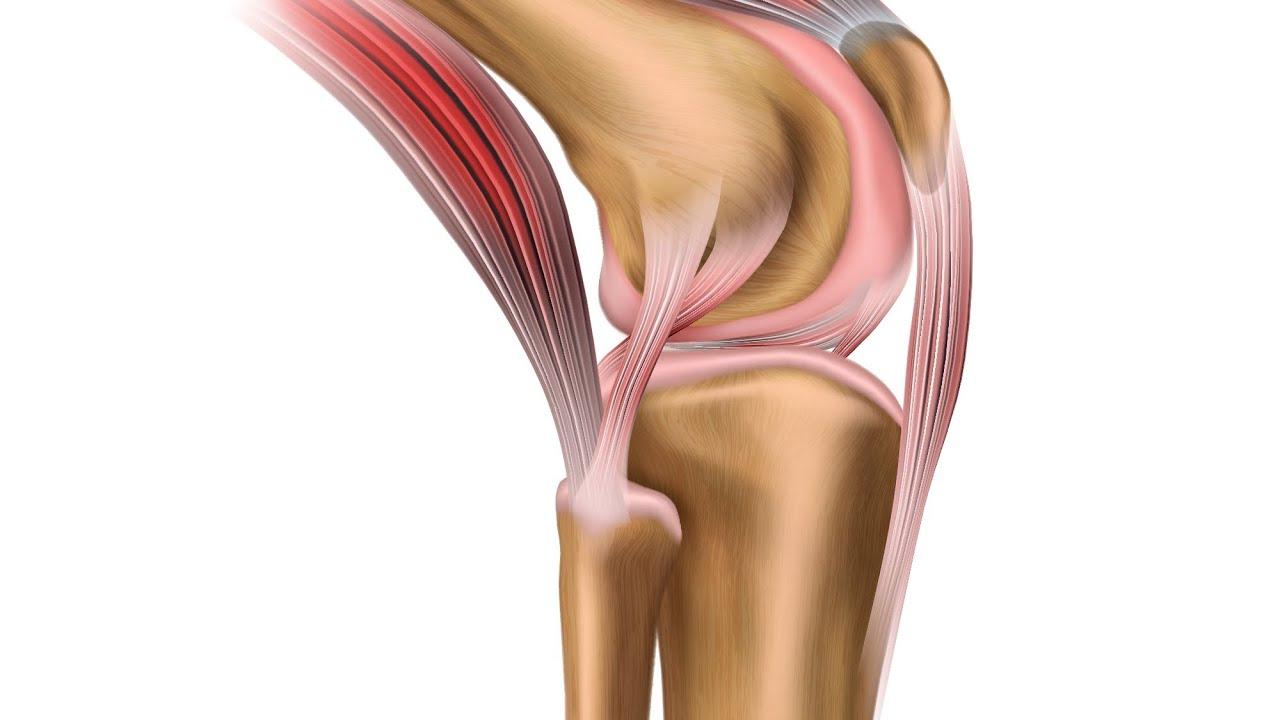 ce să bei cu artroza articulațiilor durere care scârțâie toate articulațiile