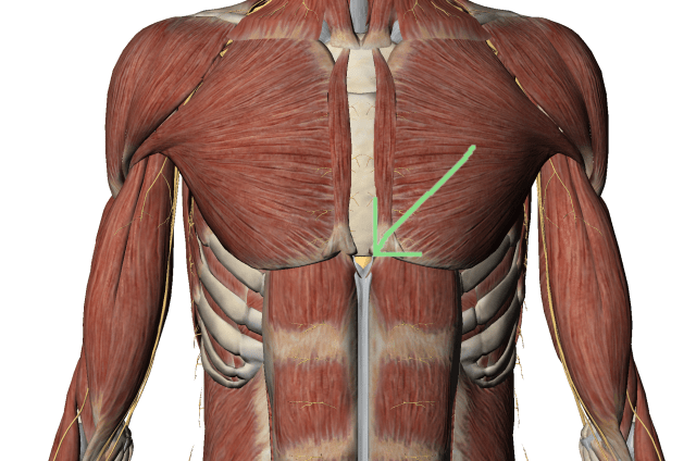 inflamația sternului-claviculă